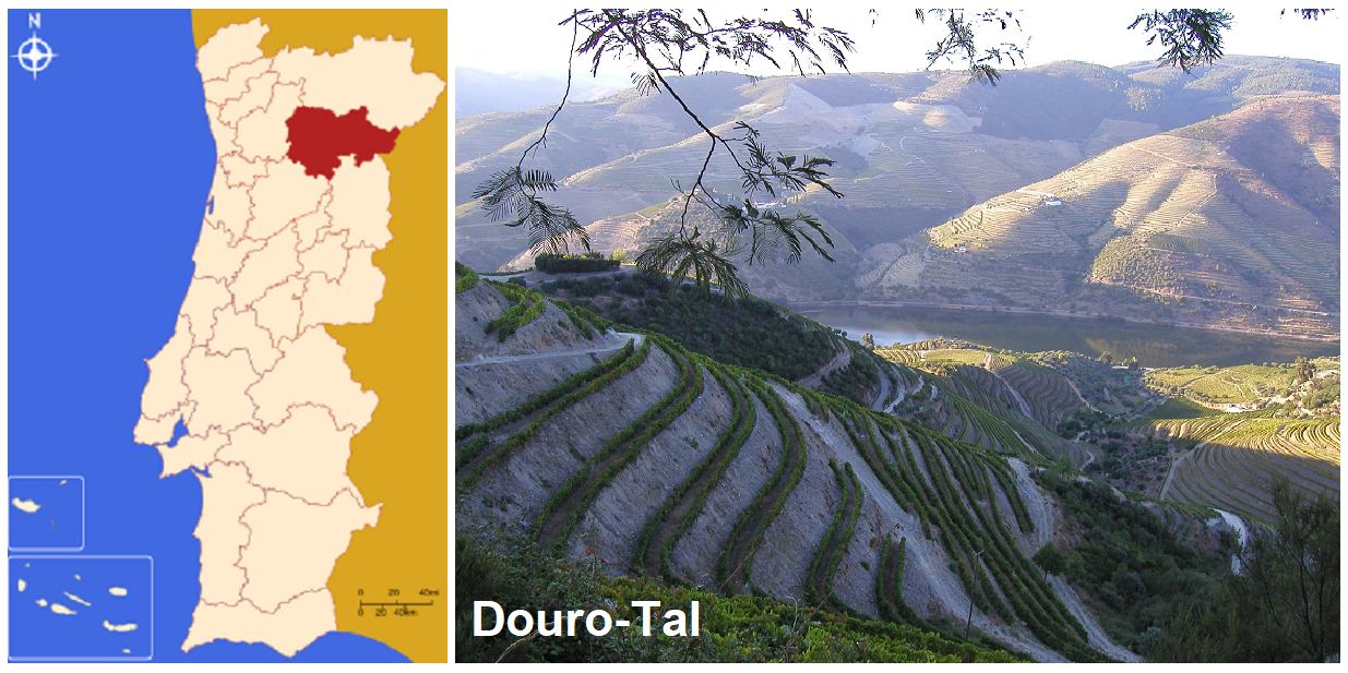 Map and photo of the area Douro