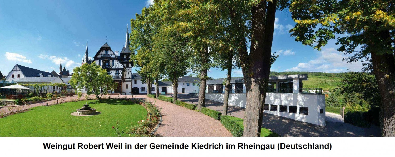 Winery Robert Weil in the town of Kiedrich in the Rheingau (Germany)