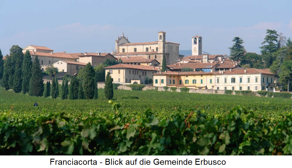 Franciacorta Vineyard - View of the municipality of Erbusco
