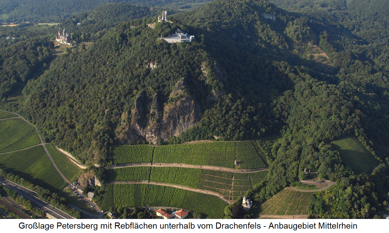 Großlage Petersberg in the cultivation area Middle Rhine - Aerial view