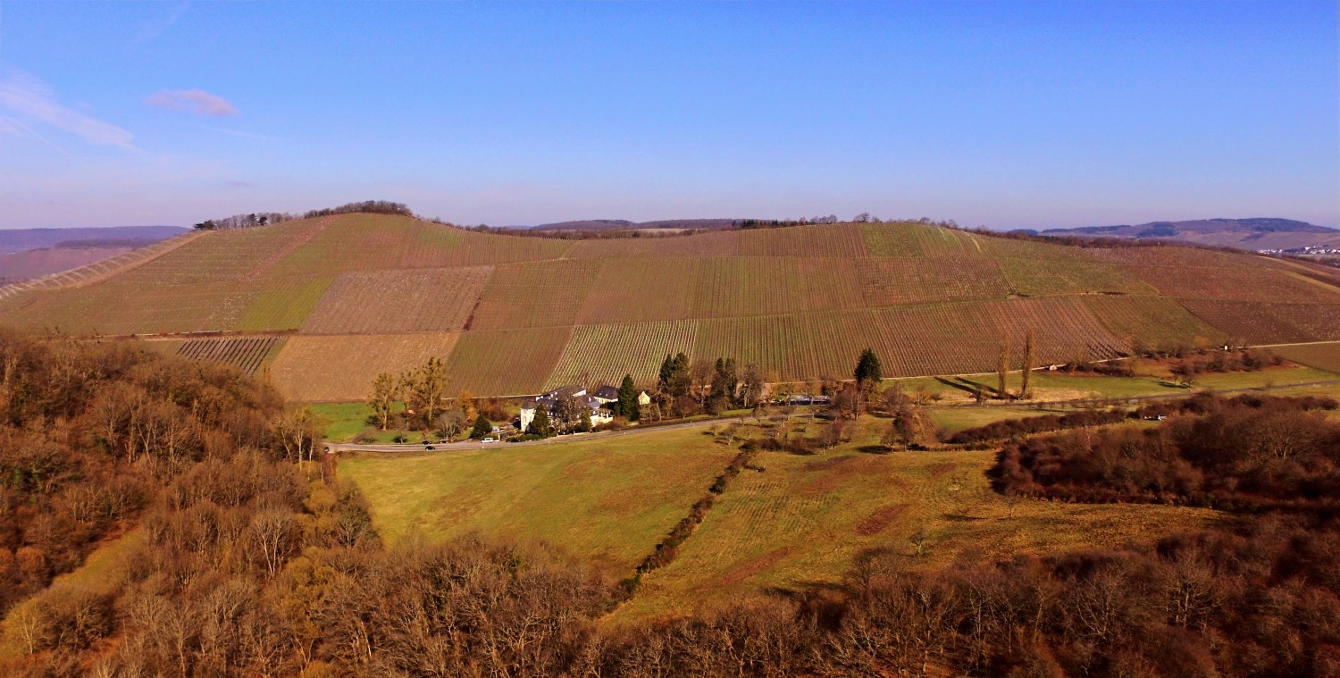 Scharzhofberg with the winery Egon Müller-Scharzhof